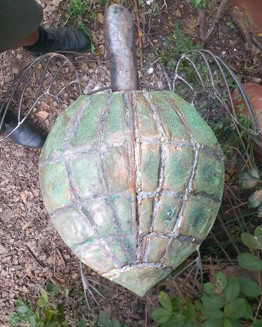 Al Phemister - Sea Turtle Series